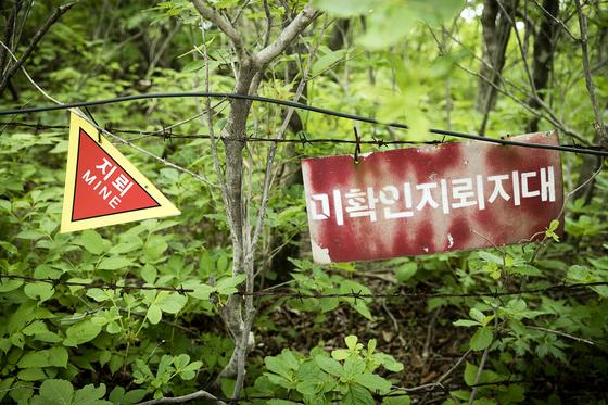 휴전선이 가까운 대암산에는 곳곳에 미확인 지뢰지대가 있다. 탐방로만 벗어나지 않으면 안전하다. [장진영 기자]