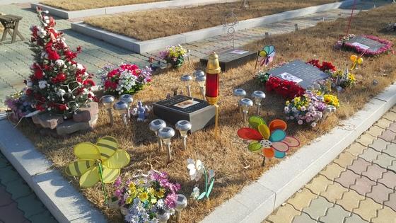 사람의 장례식장과 유사하게 꾸며진 반려동물 장례식장.야외 묘지를 선택하면 사진과 메시지가 들어간 비석을 세울 수 있다. 묘지 주변에 꽃장식과 바람개비 등이 아기자기하다. 납골당과 묘지는 주인들이 언제든 찾아올 수 있게 24시간 열려 있다. [중앙포토]