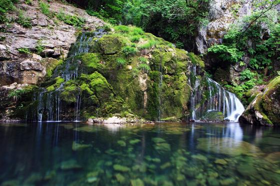 강원도 삼척 무건리 이끼계곡. 원시 자연의 모습을 그대로 간직한 청정 오지다. [사진 이원근]