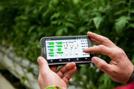 스마트팜은 자동화된 설비를 활용해 생육·환경을 진단하고 원격으로 조정하는 농법이다. 농업 생산의 전주기적 과정에 지능적 시스템화를 도입해 노동력은 줄이고 생산성을 높일 수 있다. 사진은 한 토마토 농가에서 ICT 적용 시험을 시행하고 있는 모습. [사진 농촌진흥청]