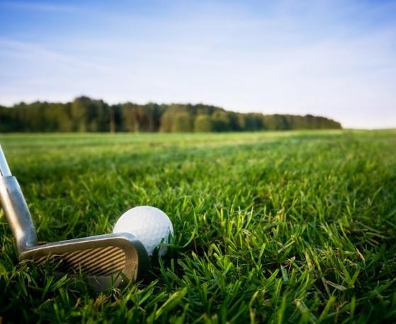 사람들을 만나면 골프이야기를 많이 하게 된다. [사진 freepik]