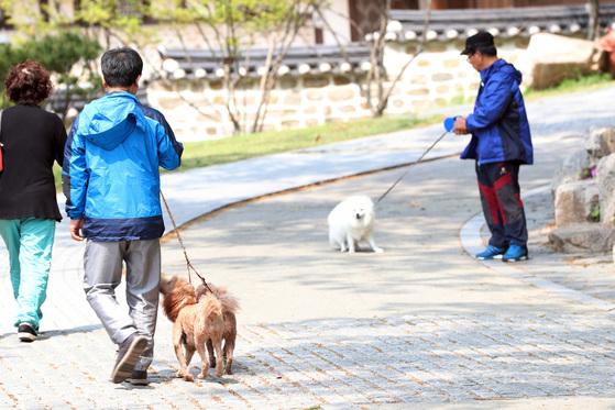 시민들이 서울 강북구 북서울꿒의숲에서 반려견과 함께 산책하고 있다. 김경록 기자