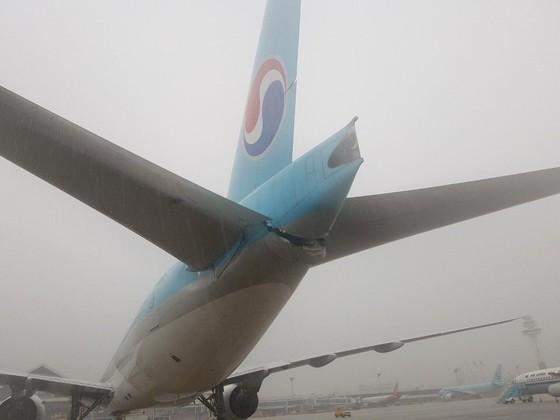 26일 오전 8시께 김포공항 주기장에서 이륙 전 탑승 게이트로 이동하던 아시아나항공 OZ3355편의 날개와 대한항공 KE2725편의 후미 꼬리 부분이 부딪히는 접촉사고가 발생했다. [사진=독자]