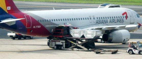 3일 서울 강서구 김포공항 계류장에서 관계자들이 아시아나항공 여객기에 화물을 싣고 있다. [뉴스1]