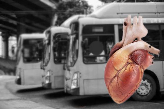한 친구가 버스를 타고 귀가하다가 심정지로 사망했다. 하루 사이에 돌아올 수 없는 길을 떠난 것이다. [사진 중앙포토, Freepik]
