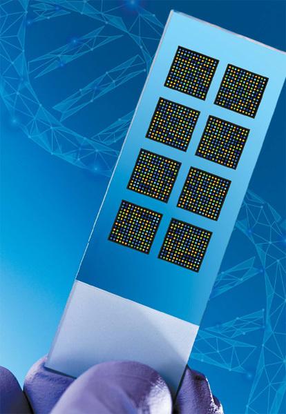정밀 의료에서는 개인 혹은 암의 유전 정보를 적극 활용한다. 특정 암 유전자에 돌연변이가 생겼는지, 얼마나 발현됐는지 등을 살핀다. 예를 들면 '온코타입 (Oncotye DX)' 검사는 유방암 관련 유전자들이 얼마나 활성화됐는지 'RT-PCR' 검사법으로 발현량을 측정해 암 재발 위험을 예측한다.