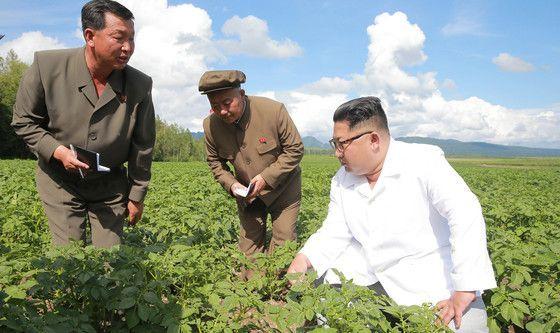 김정은 북한 국무위원장 이 양강도 삼지연군을 방문해 감자농장을 둘러보고 시찰했다고 10일 조선중앙통신이 보도했다. [조선중앙통신=연합뉴스]
