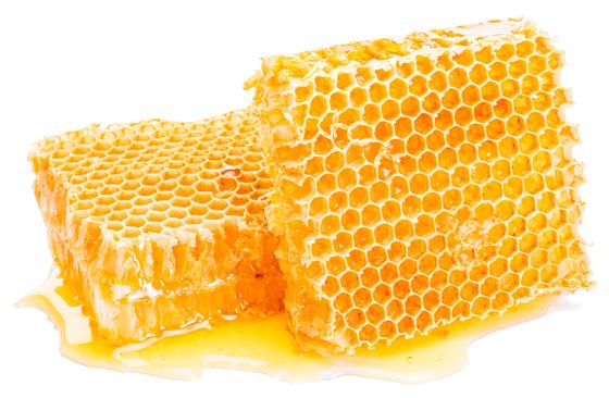 꿀아재의 꿀은 벌꿀을 뜻하고 아재는 부모와 같은 항렬에 있는 아버지의 친인척을 제외한 남자를 이르는 아저씨의 낮춤말이다. [중앙포토]