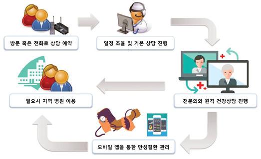 재외국민 대상 원격 건강상담 서비스 과정. [자료 분당서울대병원]