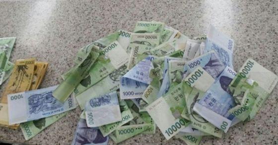 19일 한 시민이 주워 경찰에 신고한 현금 다발. [뉴스1]