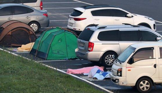 22일 오전 강원도 평창군의 대관령 휴게소 광장에서 더위를 피해 온 시미들이 잠을 자고 있다. [연합뉴스]