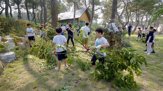 대왕별 아이누리 숲속공작소에서 나무 집 짓기 체험을 하는 초등학생들. [사진 울산시설공단]