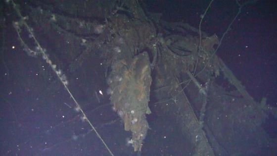 신일그룹이 지난 15일 오전 9시 50분께 울릉군 울릉읍 저동리에서 1.3㎞ 떨어진 수심 434m 지점에서 돈스코이호 선체를 발견했다고 지난달 17일 밝혔다. [연합뉴스]