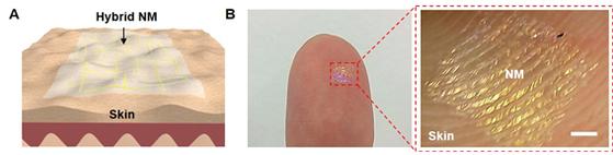 UNIST 연구팀이 개발한 초박막형 투명 스피커는 100나노미터로 매우 얇아, 굴곡진 곳이나 신체 부위에도 잘 달라붙는 특징이 있다. [UNIST]