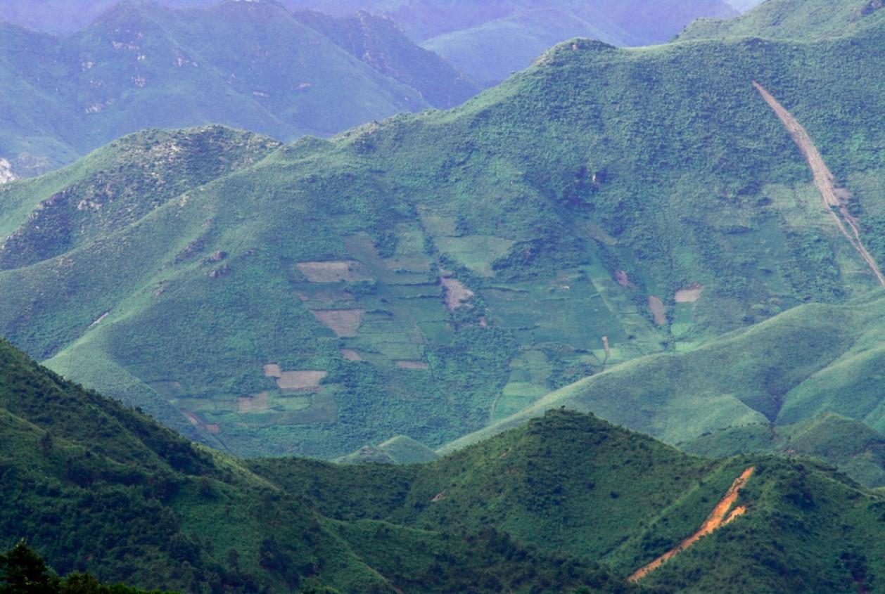 비무장지대 북쪽 강원도 김화군의 산림 황폐화 모습. [사진 녹색연합]