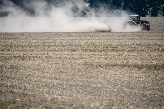 독일 농가는 폭염과 가뭄으로 밀 수확량이 30%가량 줄어들어 파산 위기를 겪고 있다. [EPA=연합뉴스]