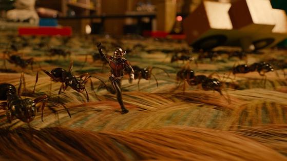'앤트맨'은 몸을 축소하거나 확대하는 등 자유롭게 몸의 크기를 바꿀 수 있다. 영화 속 개미만큼 작아진 앤트맨의 모습.