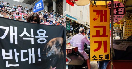 지난 7월 15일 동물보호단체의 집회 모습(왼쪽)과 서울 제기동 경동시장의 개고기 도매상 간판. [사진 뉴스1]
