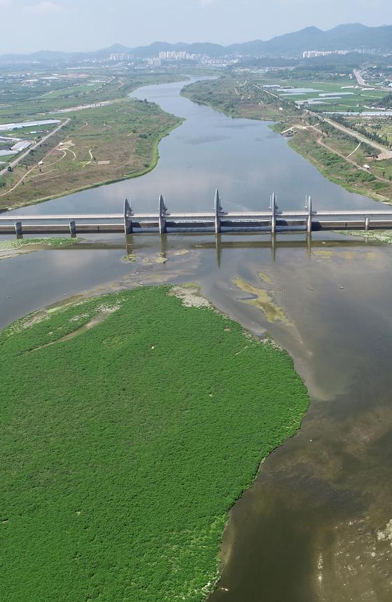 지난달 26일 촬영한 영산강 승촌보의 모습. 물은 깨끗하지 않으나 4대강 다른 보와는 달리 녹조가 심하게 발생하지는 않았다. [연합뉴스]