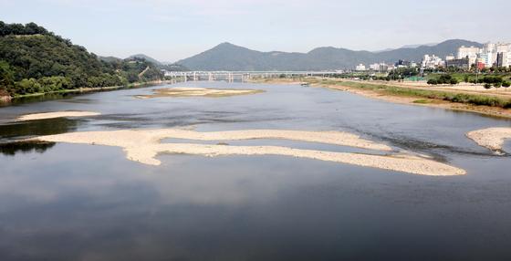 지난해 11월 공주보 개방으로 공주시내 금강이 바닥을 드러내고 있다. 공주시는 백제문화제 차질을 우려하고 있다. 프리랜서 김성태