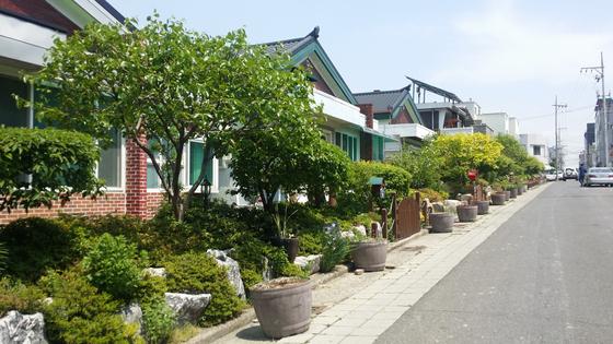 담장이 있던 자리에 정원을 꾸민 대구 남구 대명동 주택가. [사진 대구시]