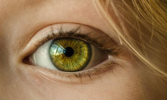 안목(眼目)은 삶의 등불이다. 안목은 사물을 분별하는 식견(識見)이다. [사진 pixabay]