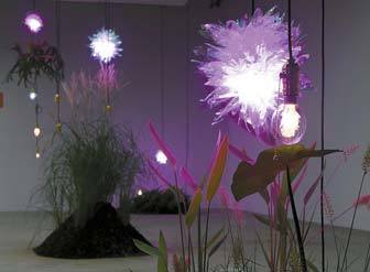 글로리홀과 식물상점의 '식물을 위한 물이끼탄과 동굴전구'. 식물의 성장을 돕는 조명이다.