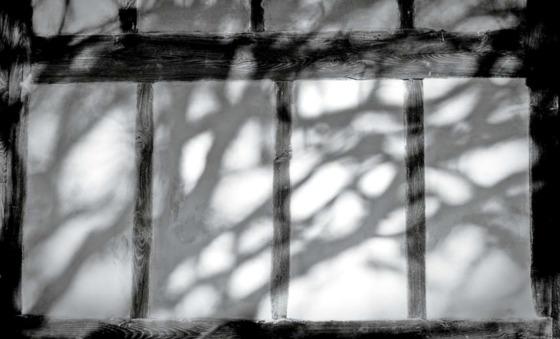 달성, 대구(2012) ⓒ강운구