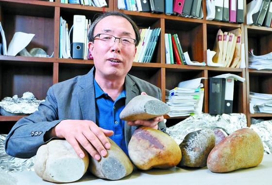 김병환 세종대 교수가 서울 대모산 정상 부근에서 발견한 돌의 성분을 분석한 결과 달 운석으로 밝혀졌다며 돌의 절단면을 보여주고 있다. [신인섭 기자]