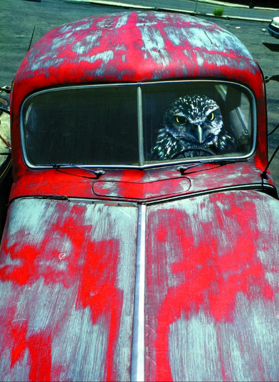 올해 동강사진상 수상자인 사진작가 황규태의 1969~72년작 '무제(Untitled)'. 사진 동강국제사진제