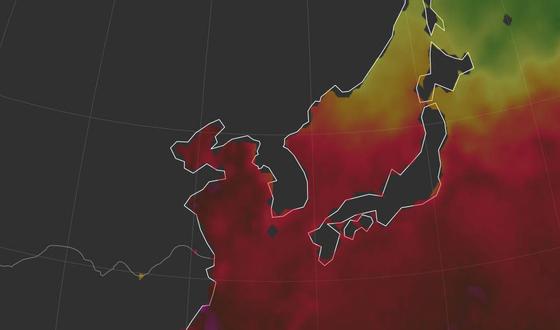 폭염으로 바다도 뜨거운 한반도. [연합뉴스]