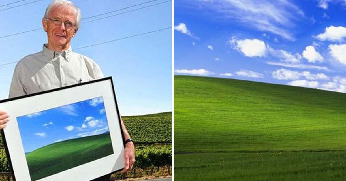 10억명 본 윈도우XP 배경화면, '스마트폰용' 나왔다