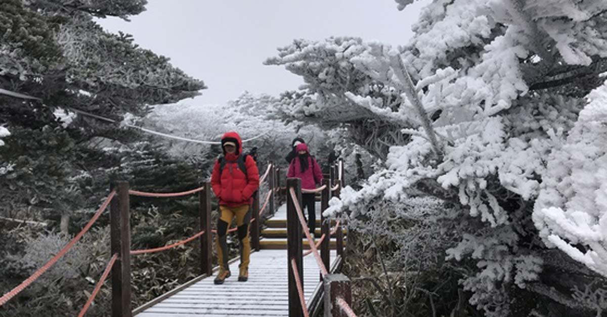 한국인이 가장 많이 찾은 2017년 인기 여행지 1위는