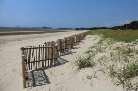 태안해안국립공원에 설치된 모래포집기. 〈사진=국립공원공단〉