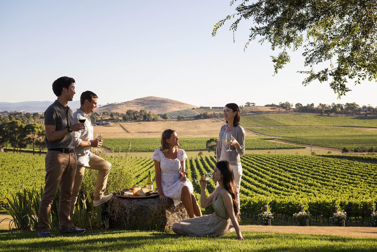 [Travel Gallery] 와인을 마시고 자연에 취하다···호주 와이너리 여행