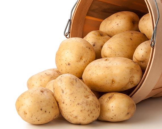 맛있는 월요일] 포슬포슬한 남작, 단단 쫄깃 대서…감자도 족보 ...