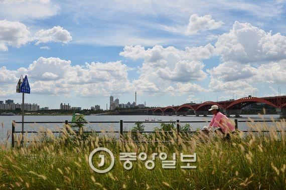 가을하늘 스케치. 한강시민공원 망원지구. 장진영 기자