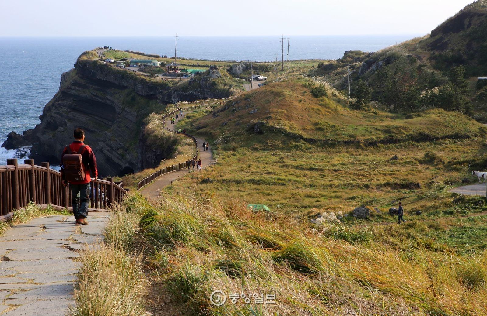 송악산은 바다와 맞닿아 있다. 해안 절벽을 따라 난 탐방로를 다 걸으면 송악산 둘레길이 완성된다.