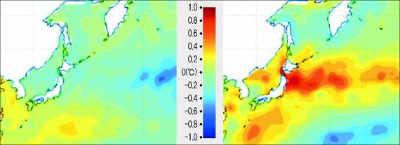 동태평양인 페루 연안에서 엘니뇨가 발생했을 때는 한반도에 끼치는 영향이 미미하다.(사진 왼쪽) 하지만 중앙태평양 지역에서 엘니뇨가 발생하면 한반도의 주변의 해수면 온도를 크게 높이기도 한다. 학계에선 변칙적인 엘니뇨의 원인으로 지구온난화에 주목하고 있다.