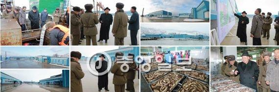 북한 관영 매체들이 15일 보도한 김정은의 인민군 15호 수산사업소 방문 모습. 김정은은 냉동창고의 물고기를 보며  금괴 같다. 쌓인 피로가 가신다 고 말했다. [사진 노동신문 캡처 ]