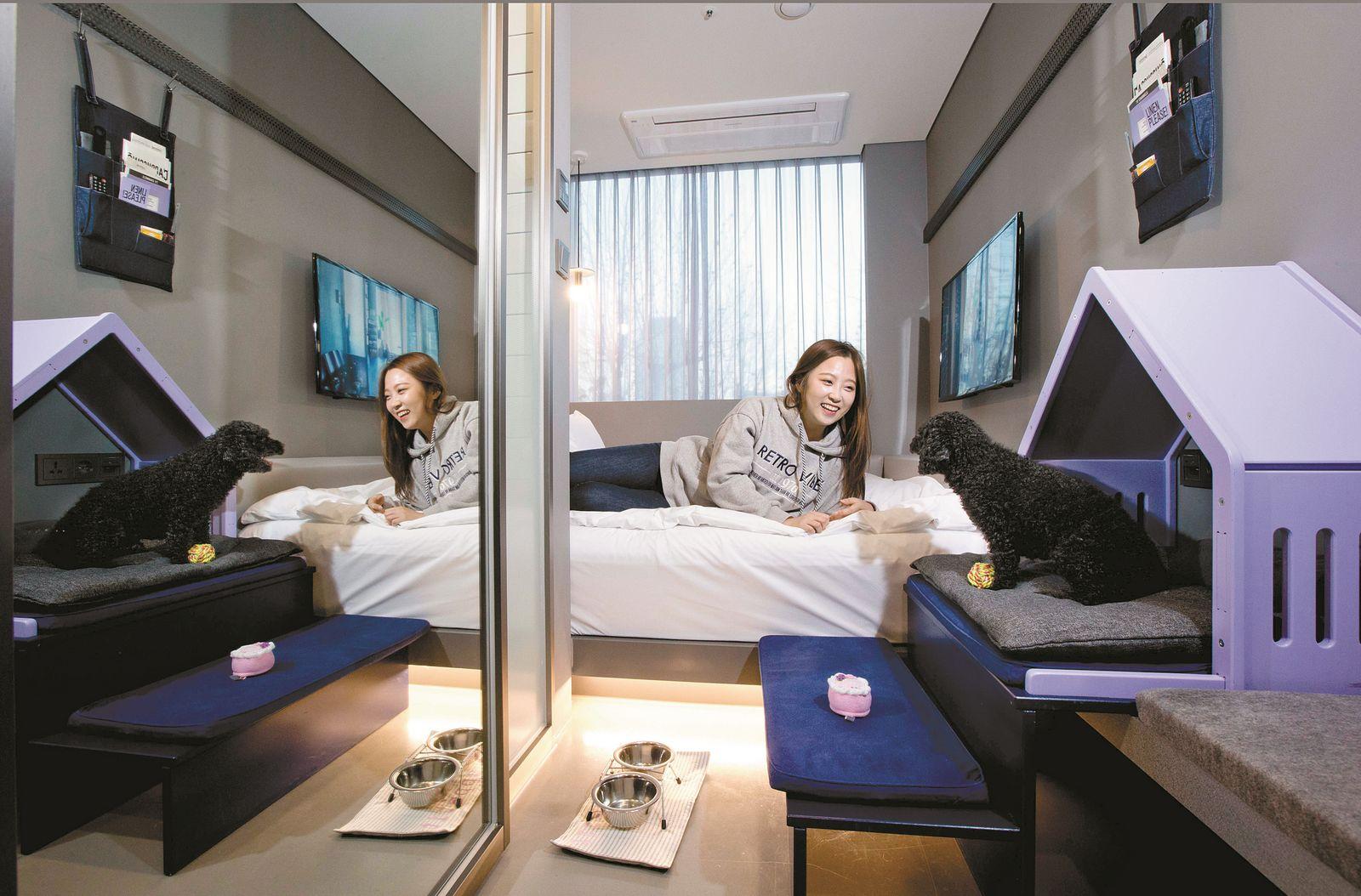 호텔 카푸치노 애완견과 함께 묵을 수 있는 바커룸. 애완견 전용 침대와 욕조도 갖췄다.