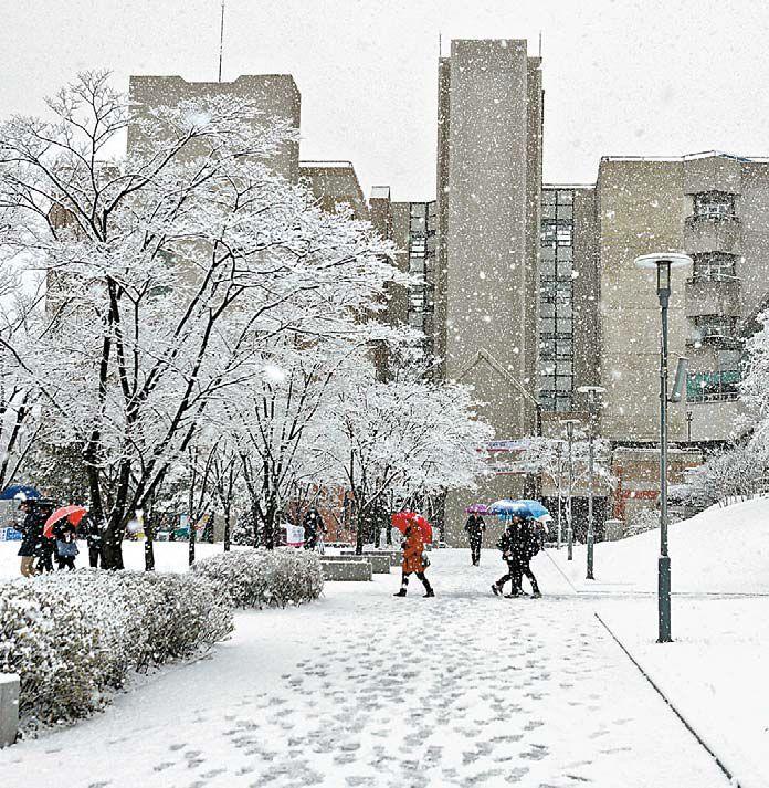 고려대 세종캠퍼스 교정. 이 대학은 고속열차 SRT 개통으로 서울과의 접근성이 좋아졌다. [사진 고려대]