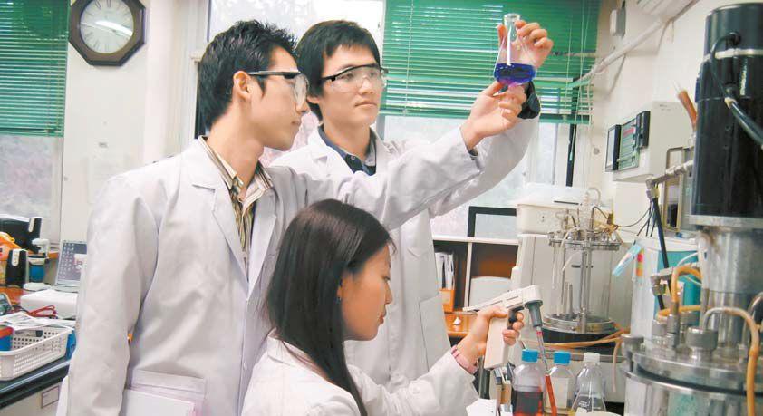 졸업논문을 준비 중인 충남대 4학년 학생들이 미생물학특수연구 수업시간에 세포 배양 실험을 하고 있다. [사진 충남대]