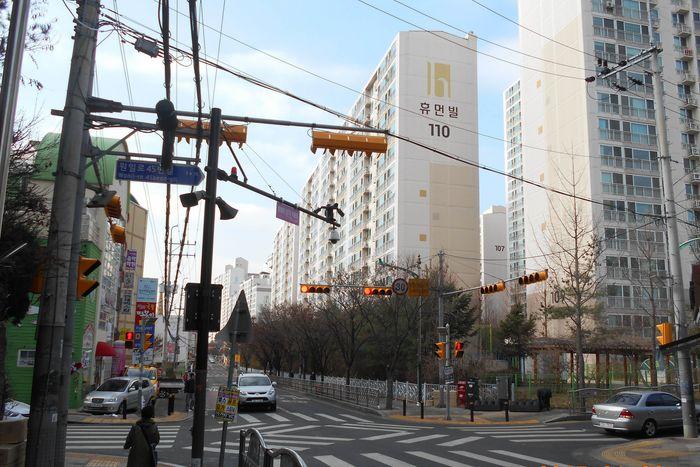 사진 : 일산서부경찰서