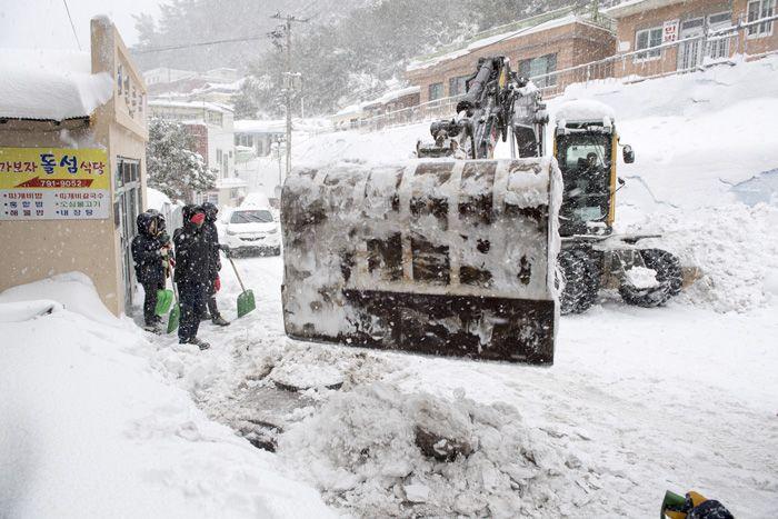설국을 연상시키는 울릉도의 모습. 눈이 잔뜩 쌓여 있다. [사진 울릉군청]