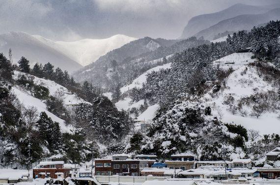 펑펑 눈 내린 울릉도, 113.1㎝ 눈 쌓여