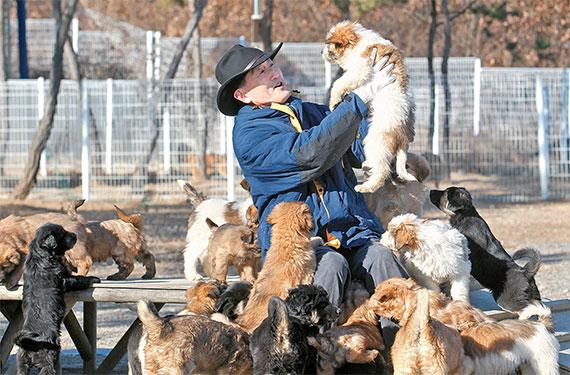 하지홍 교수가 삽살개육종연구소에서 강아지를 살피고 있다. [프리랜서 공정식]