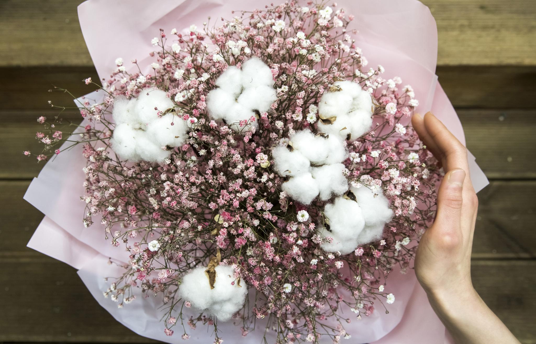드라마 '도깨비'에 나와 올 겨울 폭발적인 인기를 끌었던 '도깨비꽃(목화 꽃다발). 박종근 기자