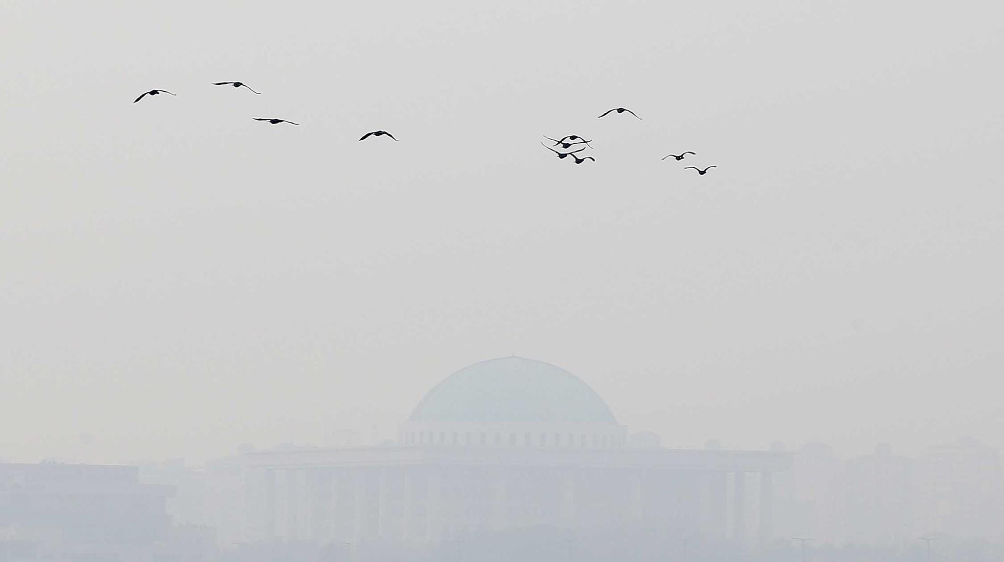 안개가 짙게 낀 여의도 국회의사당. [사진 중앙포토]