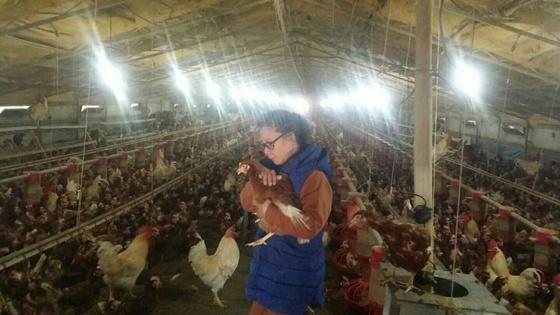전북 익산시 망성면에 있는 '참사랑 동물복지농장' 내부 모습. [사진 전북환경운동연합]